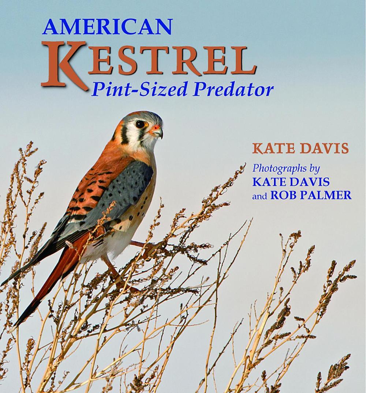 Kate Davis Books - American Kestrel - Pint-sized Predator - Raptor Photography Books - American Kestrel - Pint-sized Predator