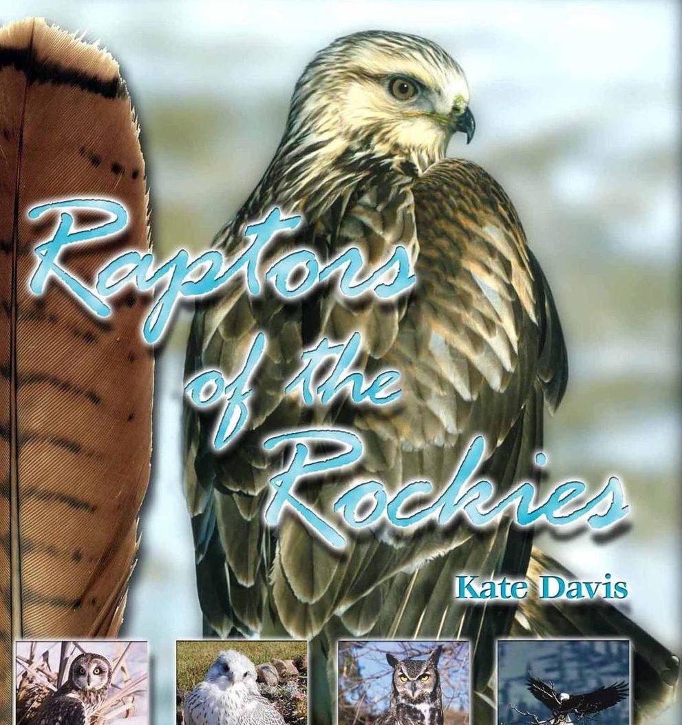 Kate Davis Books - Raptors of the Rockies  - Raptor Photography Books - Raptors of the Rockies - Out of Print